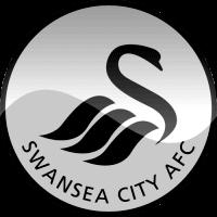 Koop  Swansea City Kaarten